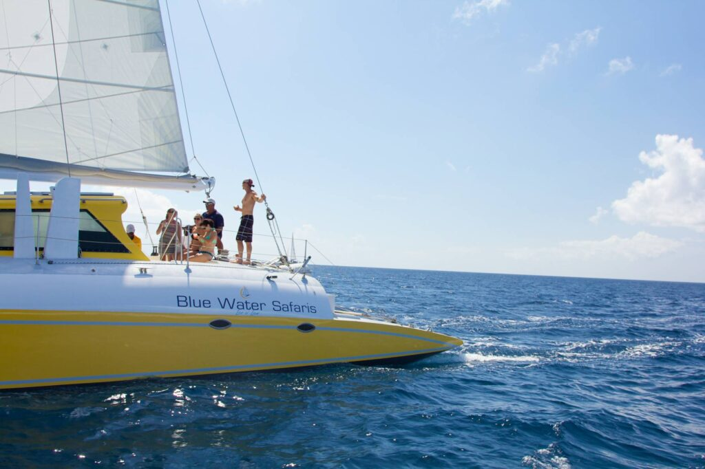 Catamaran sail st. kitts