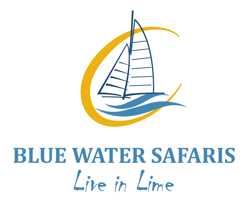 Blue Water Safaris logo